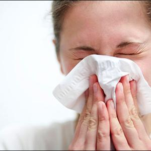 Herbs And Fruits That Cures Sinusitis
